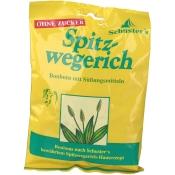 SCHUSTER HU-BONB SPITZW ZUFR