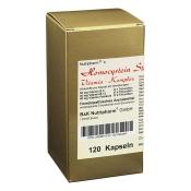 Homocystein Stoffwechsel-Vitamin-Komplex