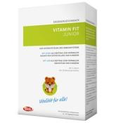 intact Vital Vitamin Fit Junior