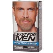 JUST FOR MEN Pflege-Brush-In-Color-Gel Aschblond / Sandy Blond