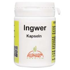 ALLPHARM Ingwer