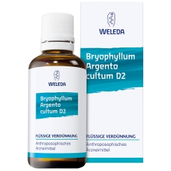 Bryophyllum Argento Cultum Dilution D 2