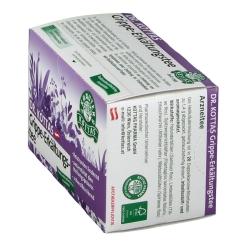 DR. KOTTAS Grippe- und Erkältungstee