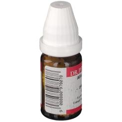 DR. PEITHNER KG Allium cepa DHU D6