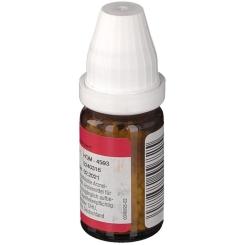 DR. PEITHNER KG Apis mellifica DHU D12