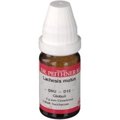DR. PEITHNER KG Lachesis mutus DHU D12