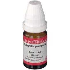 DR. PEITHNER KG Pulsatilla pratensis DHU D6