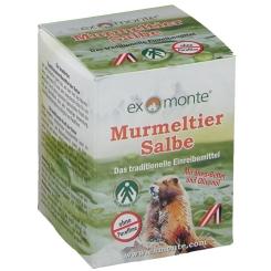 exmonte Murmeltiersalbe ohne Paraffine