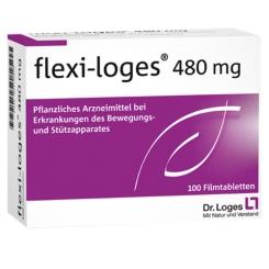 flexi-loges® 480 mg Filmtabletten