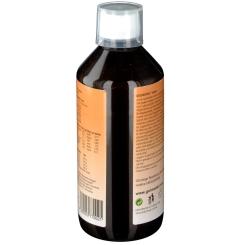 Gelmodel Biosol Pfirsich Sirup