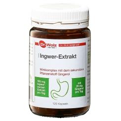 Ingwer-Extrakt