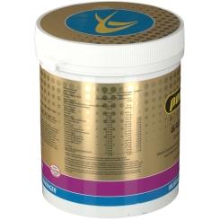 peeroton® GAINER-Shake Waldbeere